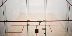 Game Day Delivered Cross-Border Canada Case Study: Racquetball court